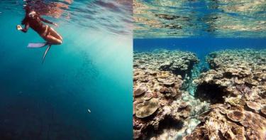 新冠肺炎教會我們的事!後疫情時代從救台灣生態環境開始做起!台灣四面環海,更應該用『真正零汙染的友善防曬霜』保護我們自家的海洋生態