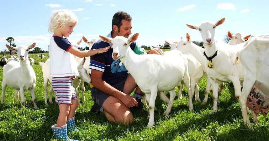 【成長情報】幼兒羊奶粉品牌歡慶30周年,用高品質照顧寶寶成長