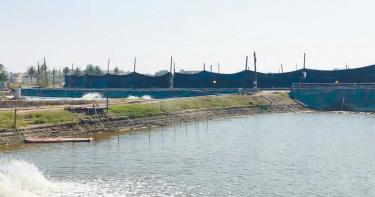 興達港變身遊艇碼頭有譜 廠商估砸10億進行開發