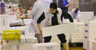 屍體太多!巴黎最大果菜市場變「停屍間」…冷藏室改冰1千具棺木