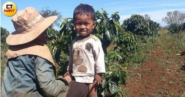 【黑金狩獵師4】 靠第一桶金赴寮國創業 雨季種咖啡賠到想哭